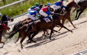 carreras de caballos apuestas